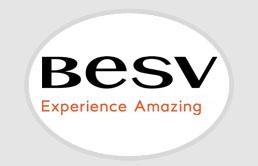 BESV - 2021